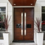 : Double doors with sidelights are the perfect solution for a front entry
