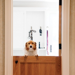 : Make an interior Dutch door one of the strongest points of your interior