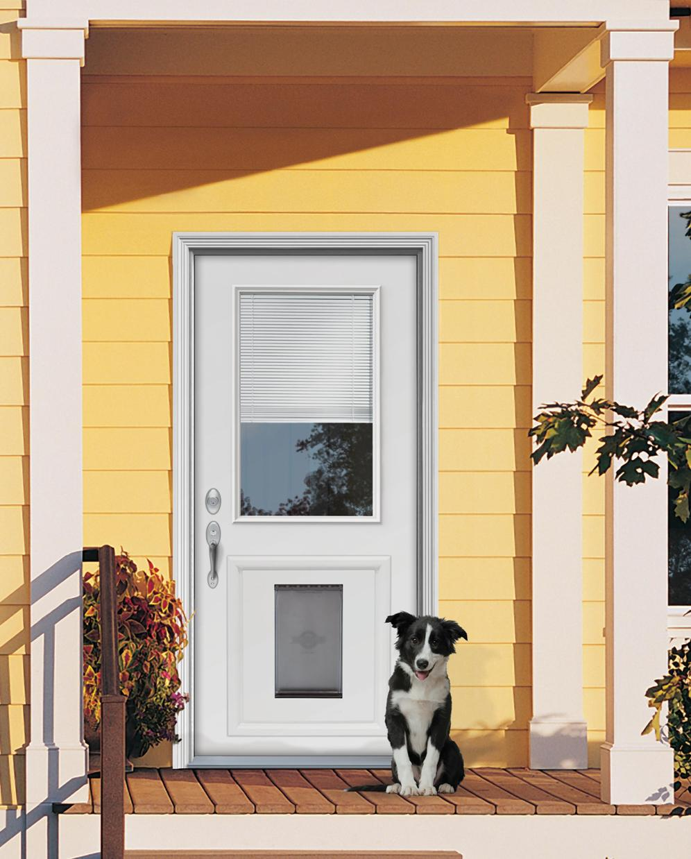 Dog Doors Installed Choice Image Accordion Style Exterior Doors