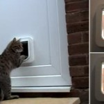 : Best interior cat door will not only let your pet in and out but will decorate your home interior