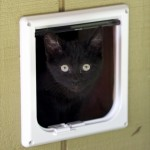 : Cat door for interior garage door can be full opened or even locked when you leave home