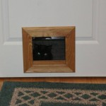 Cat door for interior is  not something unique today – choose your own item online