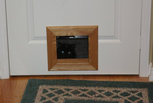 Interior cat doors for the best pets ever - Interior door with pet door installed ...