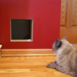 : Interior cat door for walls lets your favorite pet coming in and out the room