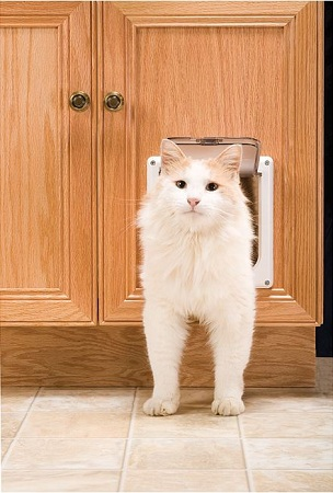 Interior Cat Door With Flap Is The Most Convenient Construction