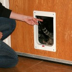 : Interior door with cat door is the often choice of the pets owners who care about their favorites