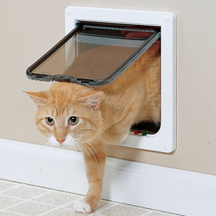 Interior screen door for cat will not let your cat coming into the room where your baby is sleeping