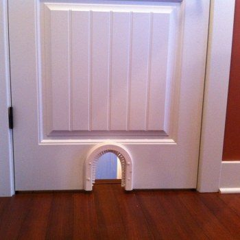Interior cat doors for the best pets ever planetlyrics Images